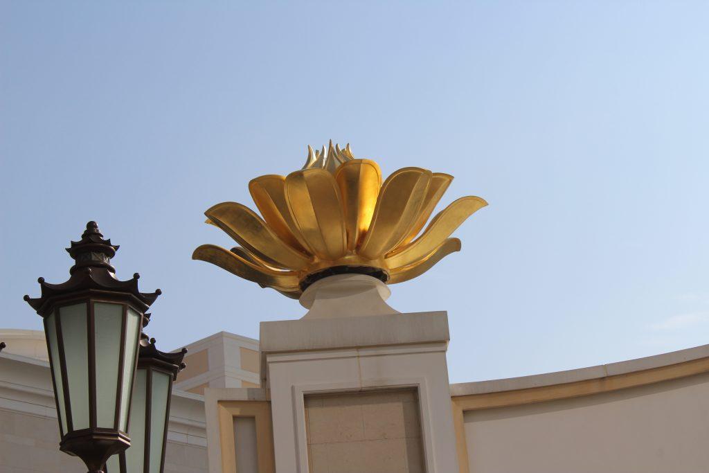 Lotus flowers - Bottom view
