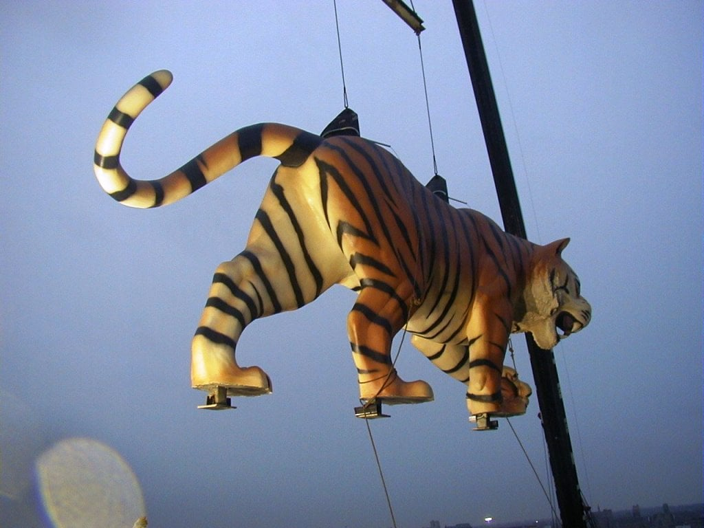 Tigers Installation